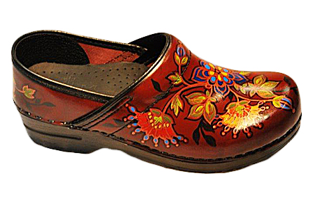 Hand Painted Dansko Footwear & Clogs