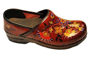 Custom Painted Dansko Shoes